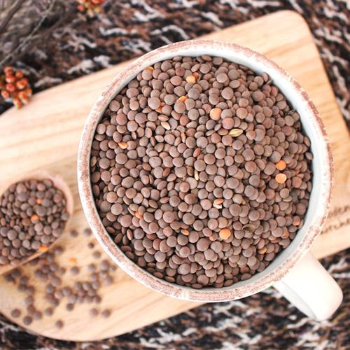 [슈퍼푸드] 타임지선정 세계 10대건강식품 렌틸콩 2.5kg(500g*5봉)이식사