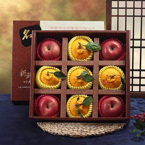 롯데백화점 명품 사각 사과,한라봉 프리미엄 혼합세트