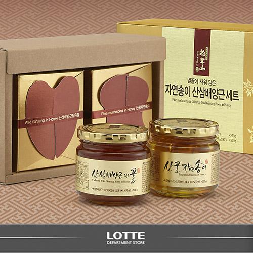 롯데백화점 자연송이,산삼배양근꿀 세트 1호
